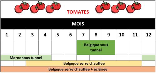 tomates de saison