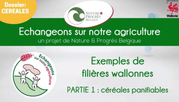 2019-08-07 11_41_36-Des initiatives wallonnes de filières en céréale panifiable - YouTube - Opera